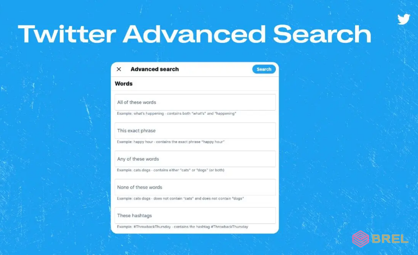 How to do an advanced Twitter search   Brel digital